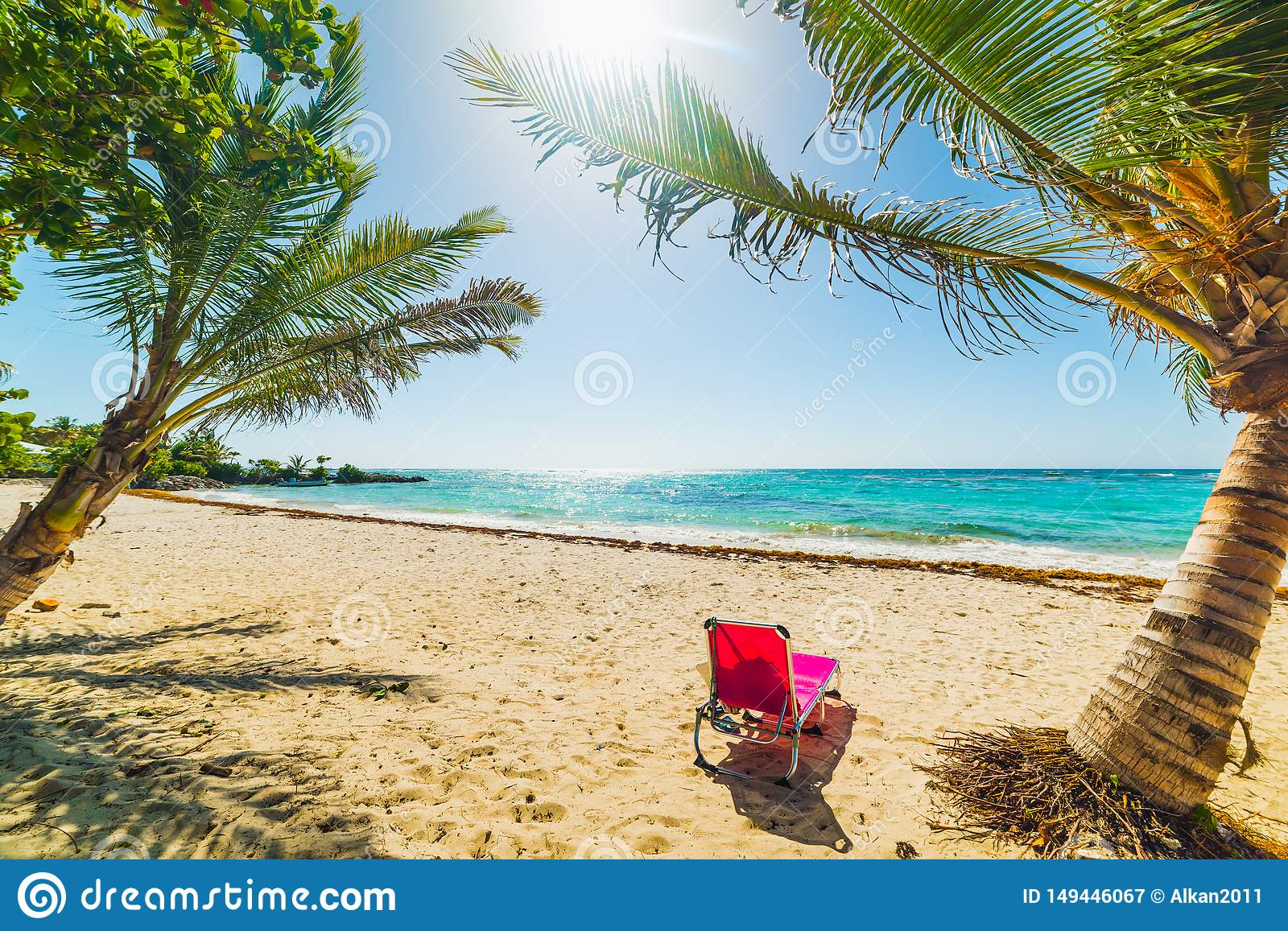 Pink Beach Chair Under Palm Trees In Guadeloupe Stock Image Image Of Chair Guadeloupe 149446067