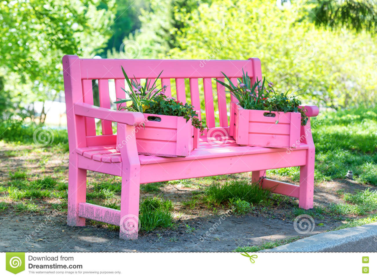 Pleasant Pink Bench In The Green Park Stock Image Image Of Garden Machost Co Dining Chair Design Ideas Machostcouk