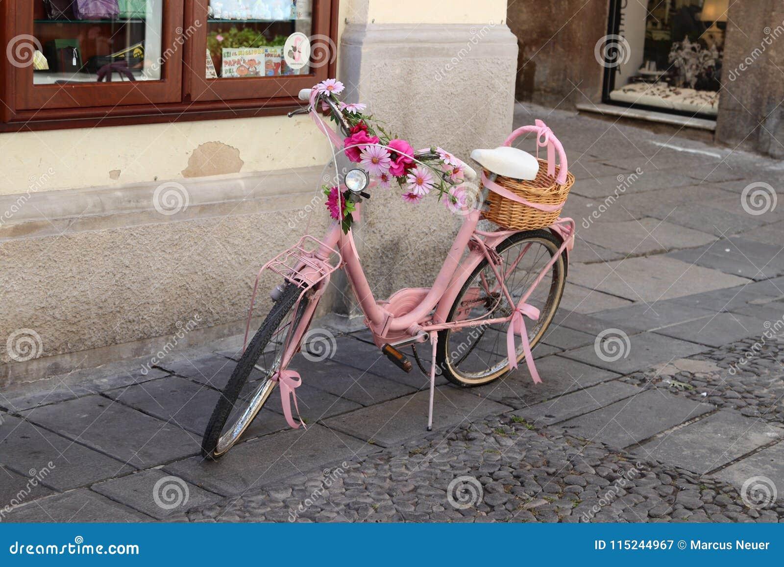 Download Pink bike stock image. Image of bike, pink, sardinia - 115244967