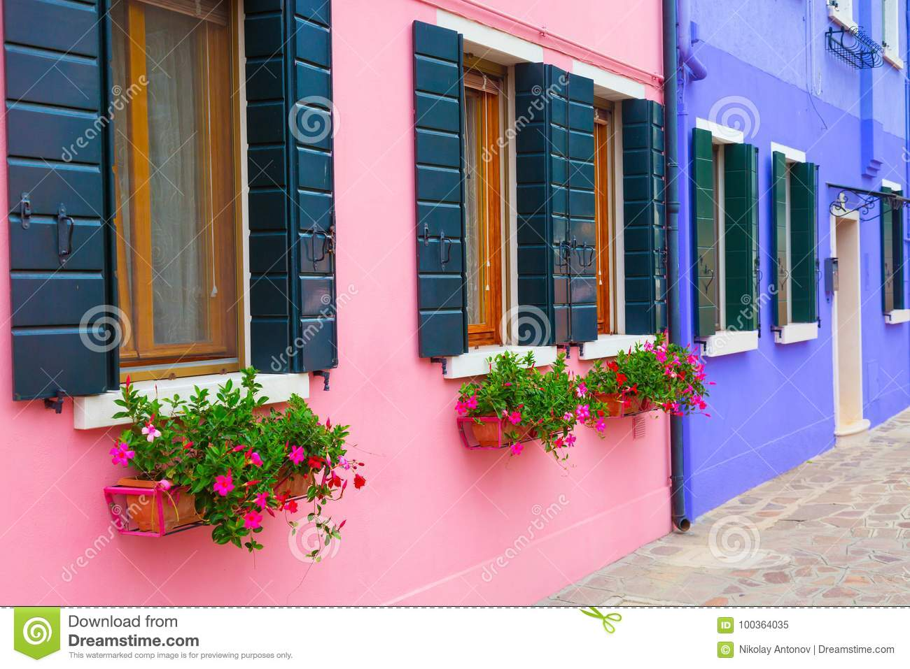 Pink And Blue Houses With Flowers And Plants. Colorful Houses In ...