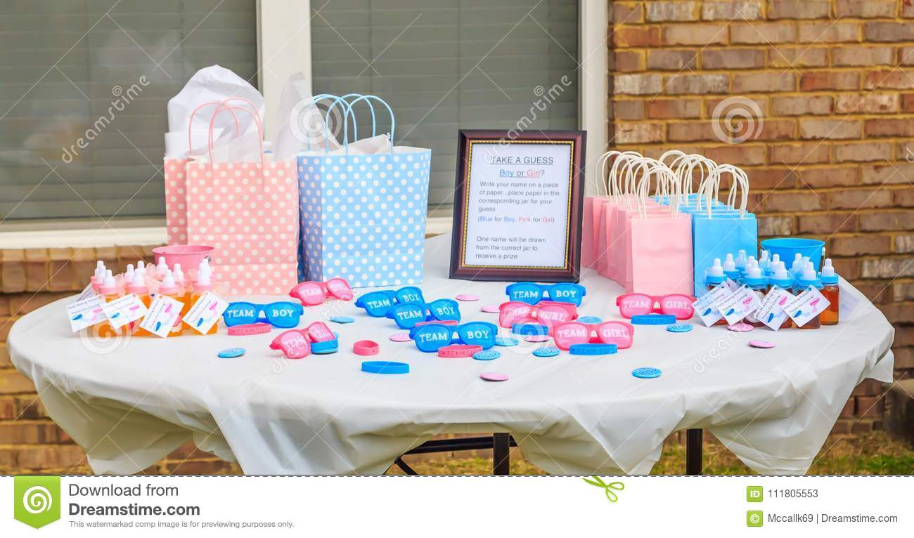 Pink And Blue Outdoor Gender Reveal Party Decorations Editorial