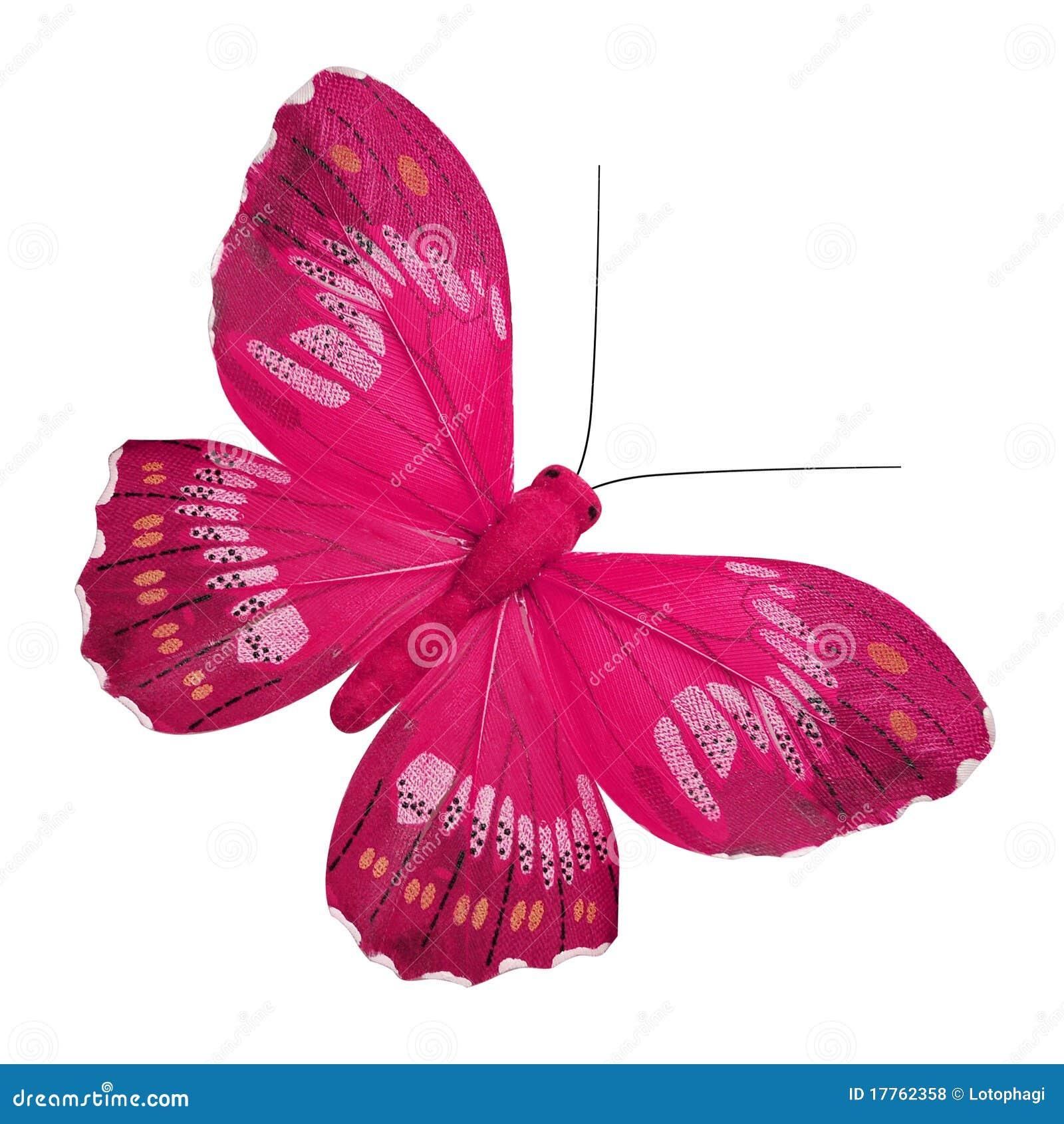 21 mooie kleurrijke vlinder - photo #40