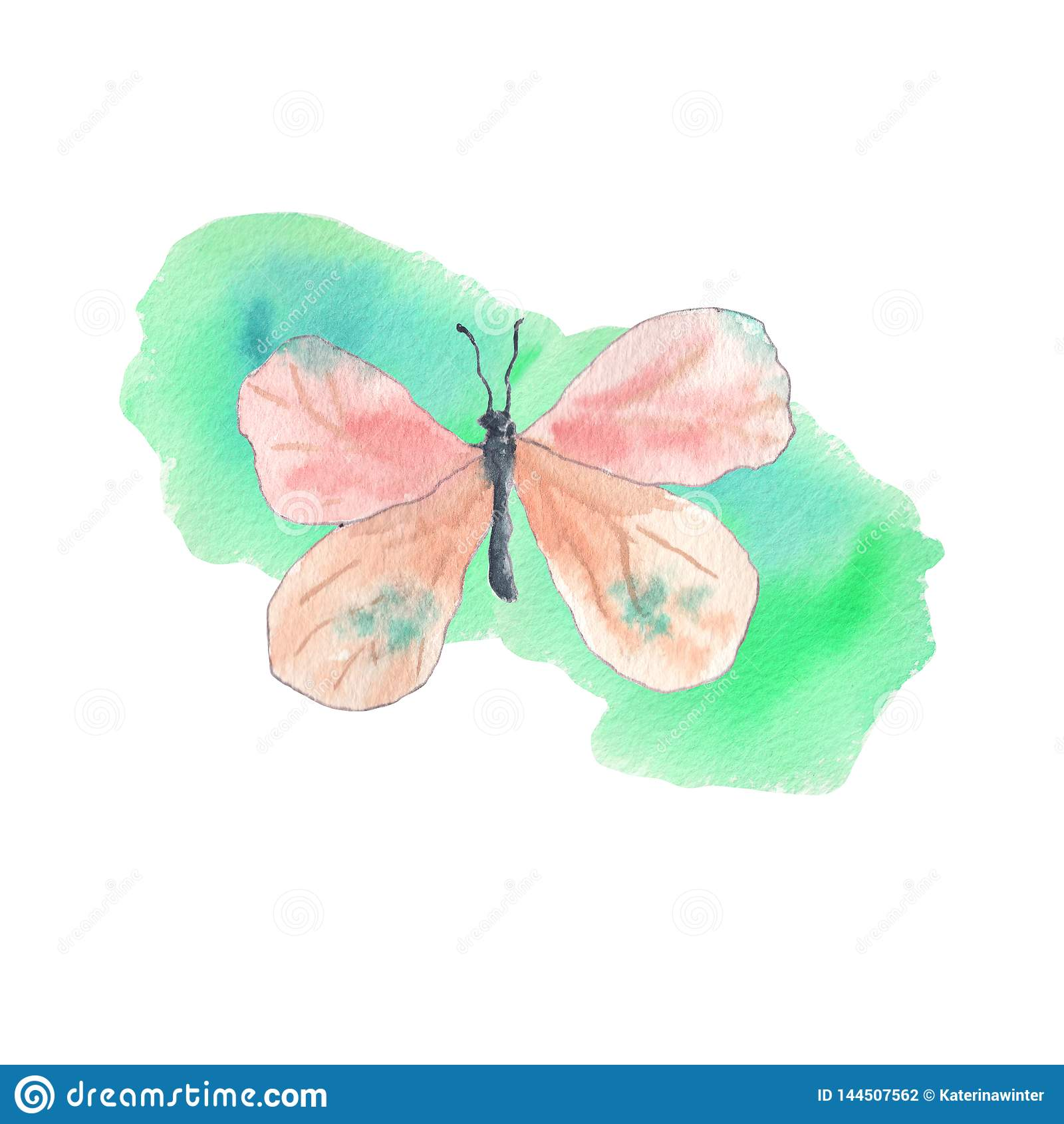 Pink butterfly with emerald background
