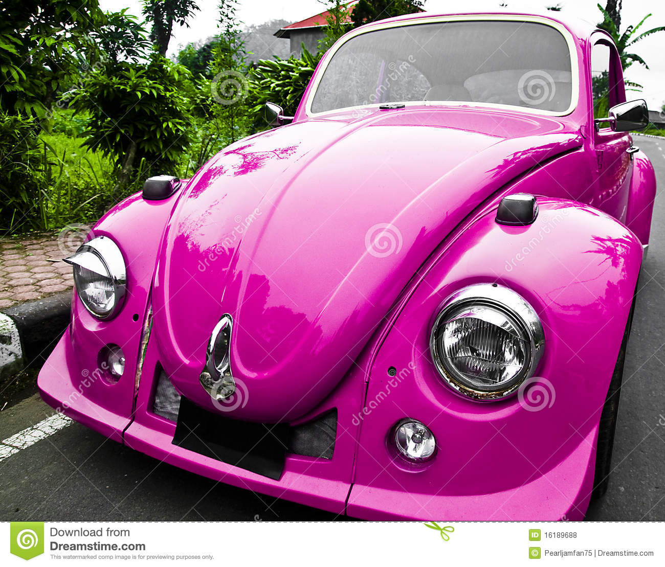 Pink Car Beetle Stock Photo Image Of Driver Funny