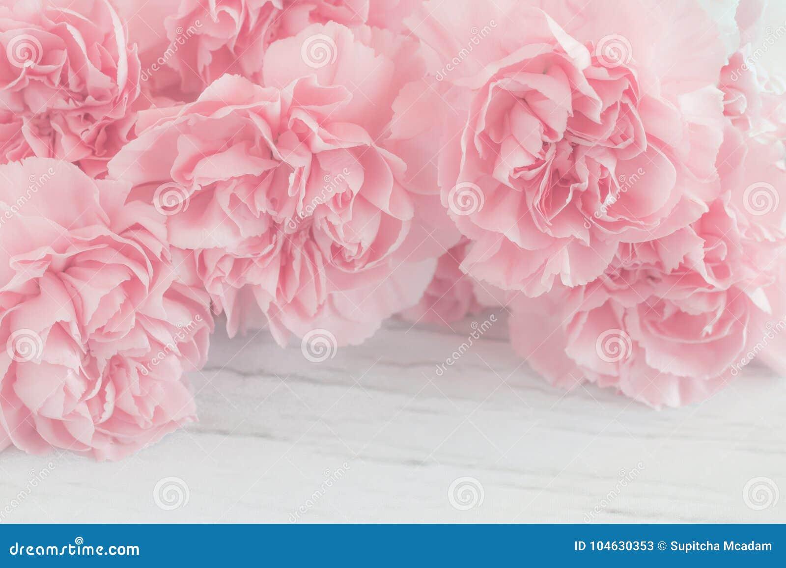 Pink Carnation Flowers Bouquet Stock Image Image Of Feminine