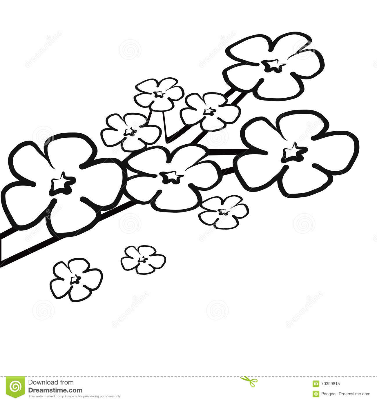 Pink cherry blossom flower branch colorless stock vector for Cherry blossom coloring pages