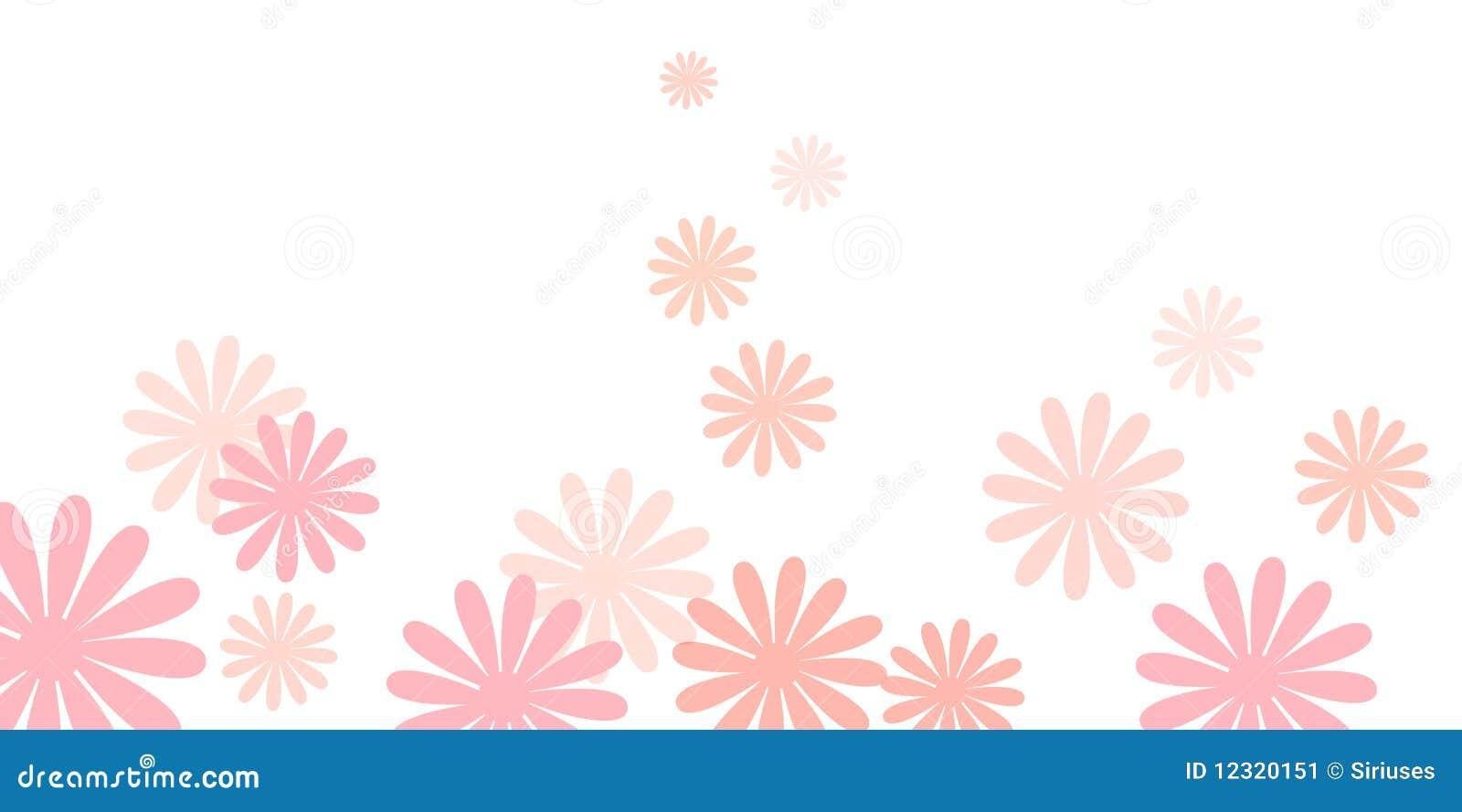 Pink Daisy Flowers Background Stock Image - Image: 12320151