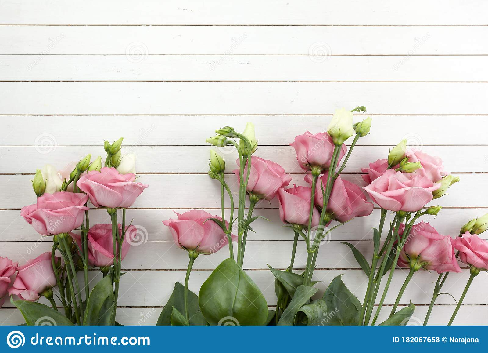 pink eustoma flowers on wooden background in vintage style romantic wedding background top view stock photo image of closeup green 182067658 pink eustoma flowers on wooden background in vintage style romantic wedding background top view stock photo image of closeup green 182067658