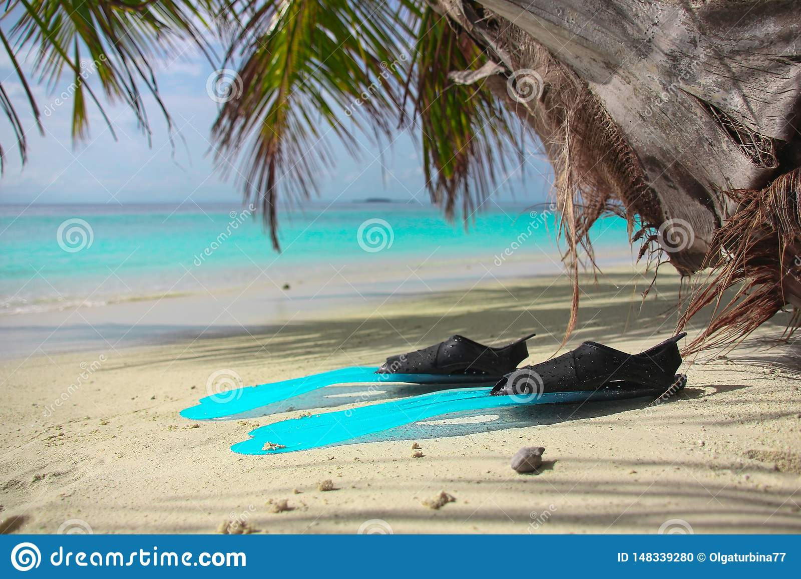 Turquoise blue flippers close up lie on the shore of a tropical island with white sand, in blue lagoon.