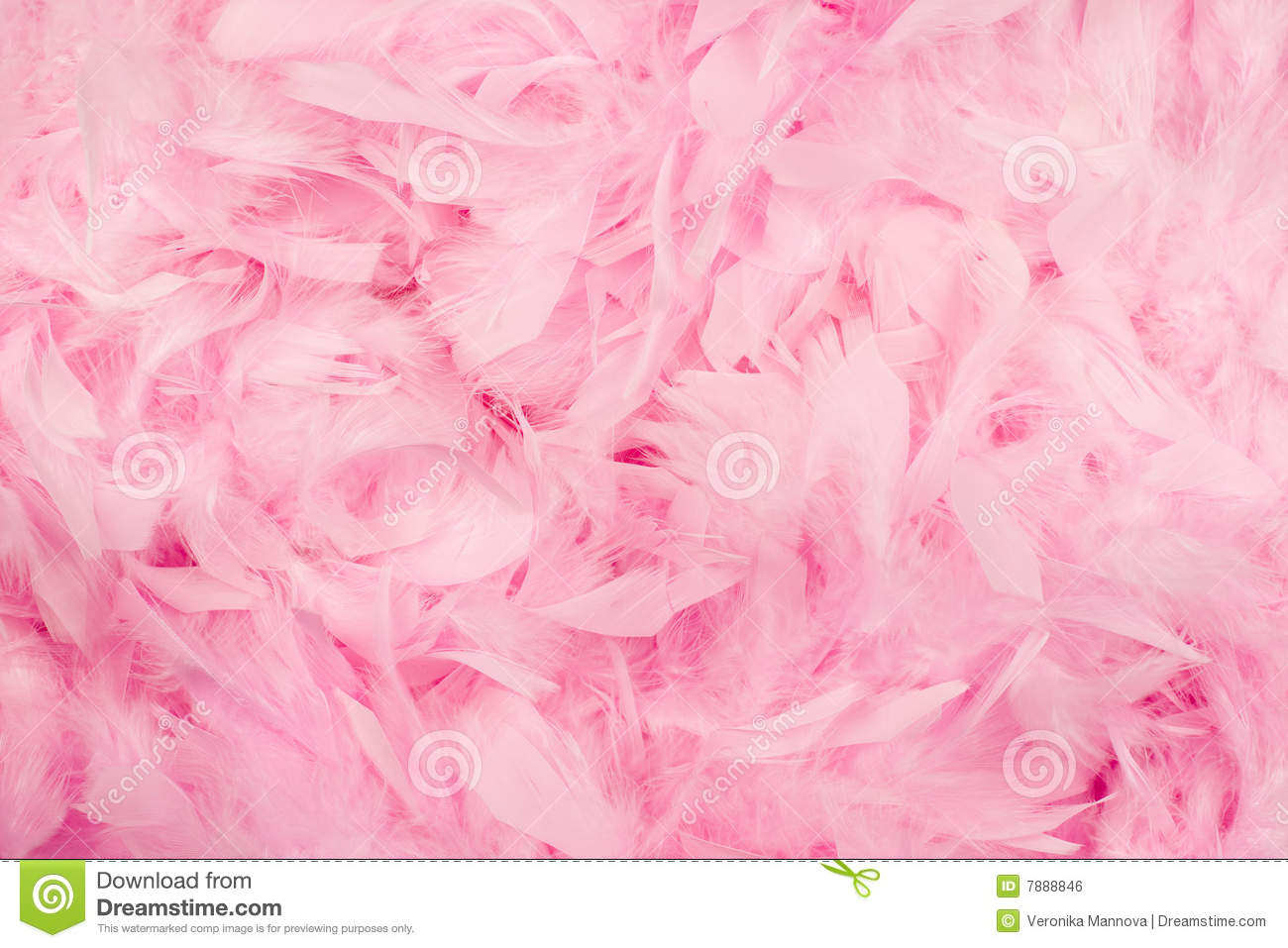 Pink Feathers Background Royalty Free Stock Image - Image: 7888846