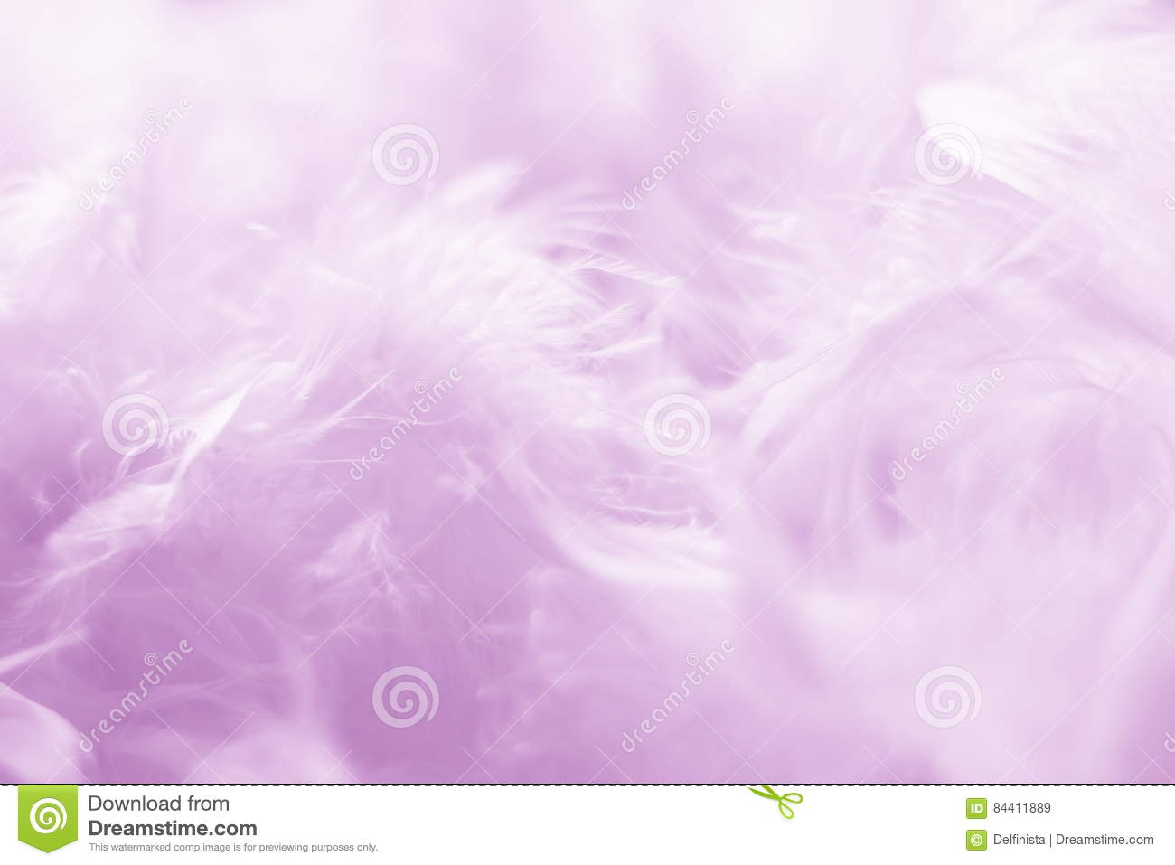 Pink Feathers Background - Stock photos