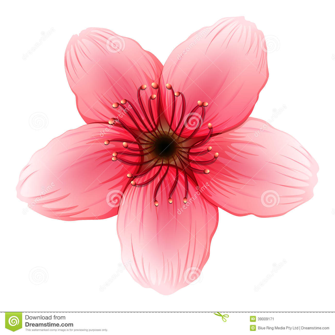 A pink five petal flower stock vector illustration of ornament download a pink five petal flower stock vector illustration of ornament 39009171 mightylinksfo