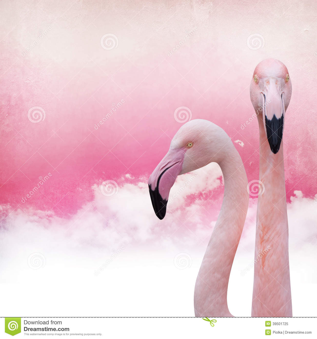 pink flamingo essay jennifer price A parody of the nobel prizes, pink flamingo essay by jennifer price the pink flamingo essay by jennifer price ig nobel prizes are awarded each year in mid-september.