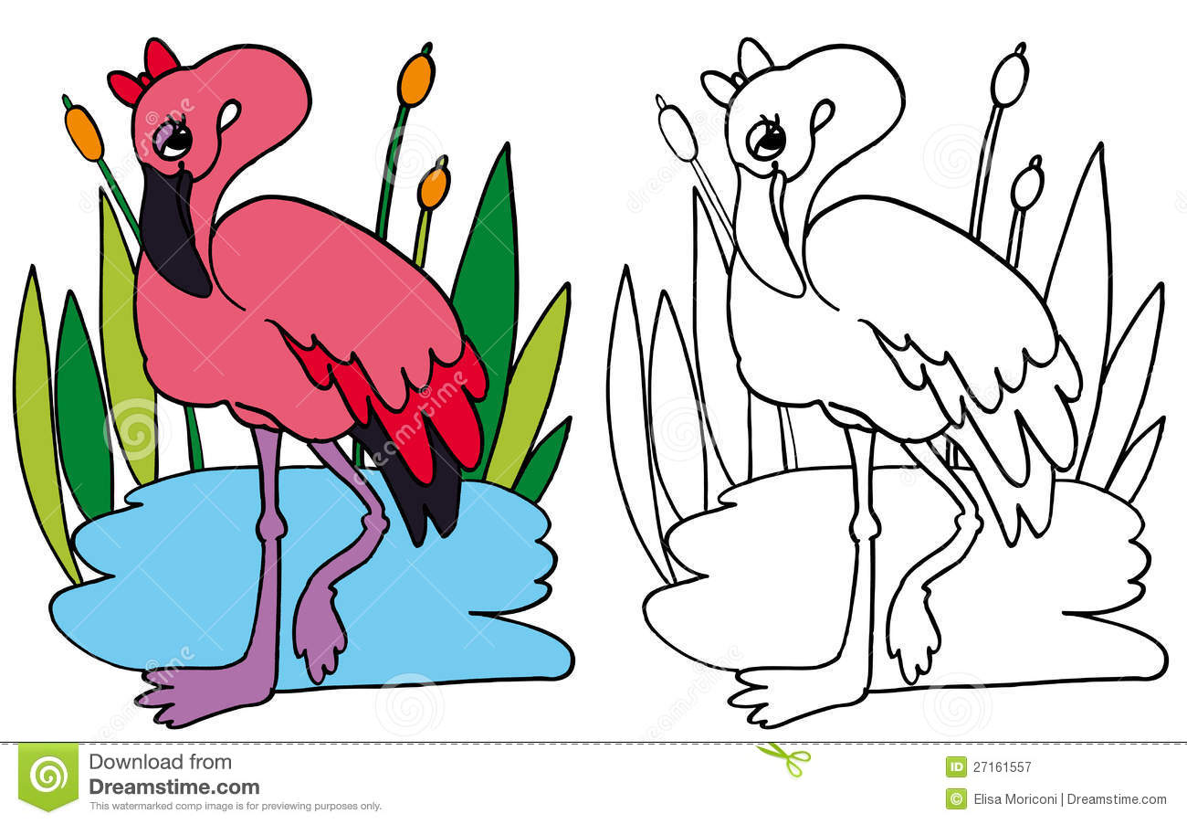 Pink Flamingo Color And Bw Stock Illustration Illustration Of