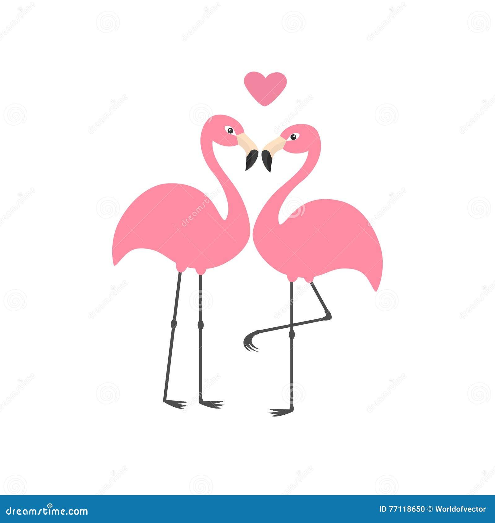 Cartoon Characters Love : The white flamingo in zoo stock image cartoondealer