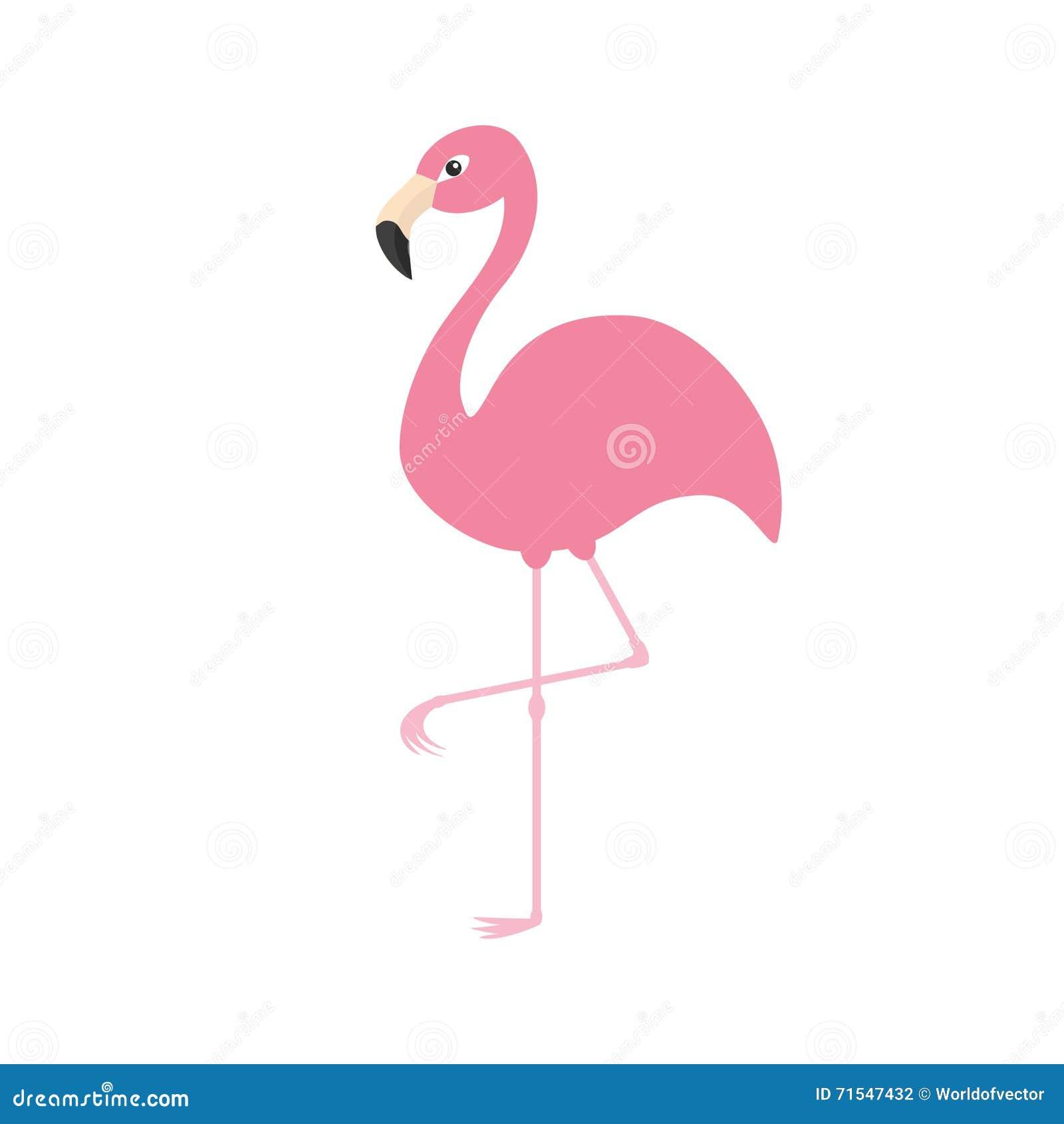 Pink Flamingo On One Leg Exotic Tropical Bird Zoo Animal