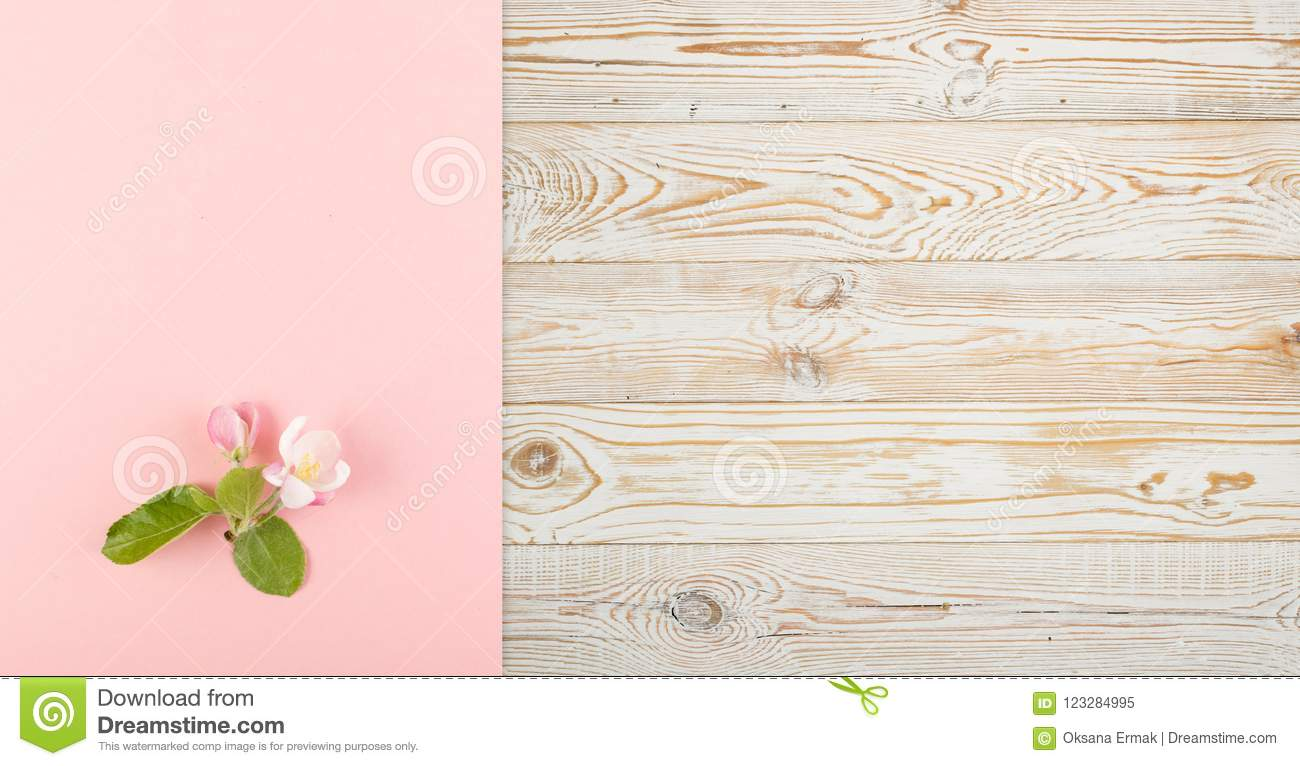 Pink flower background stock image image of birthday 123284995 beautiful pink flower background with blossoming light pink apple flowers flat lay and top view creative pastel paper card with place for text mightylinksfo