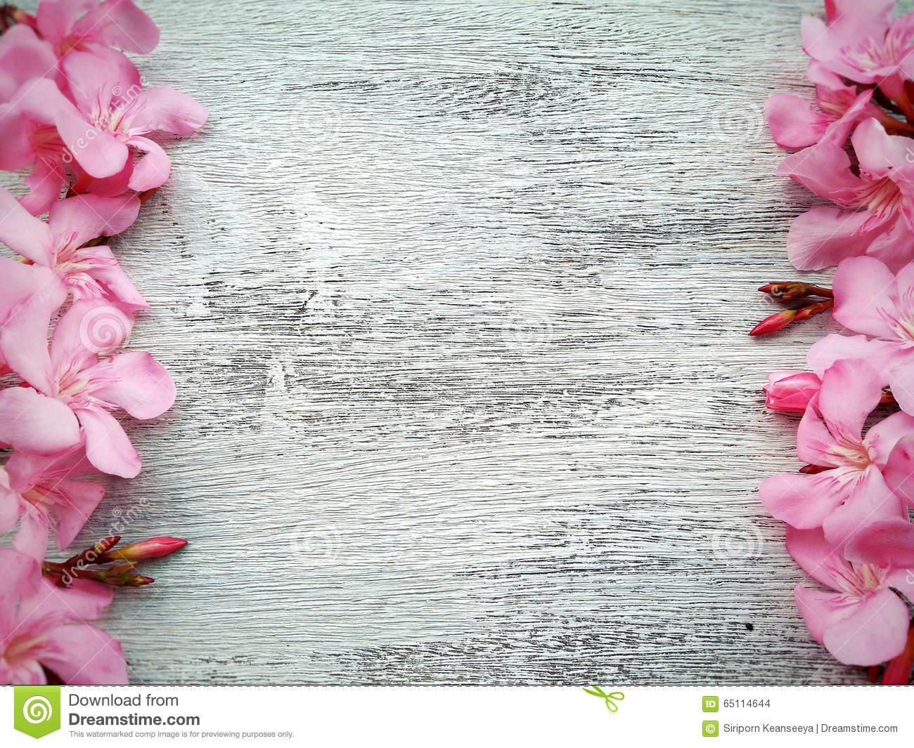 Pink Flower Border And Frame On White Wooden Background Stock
