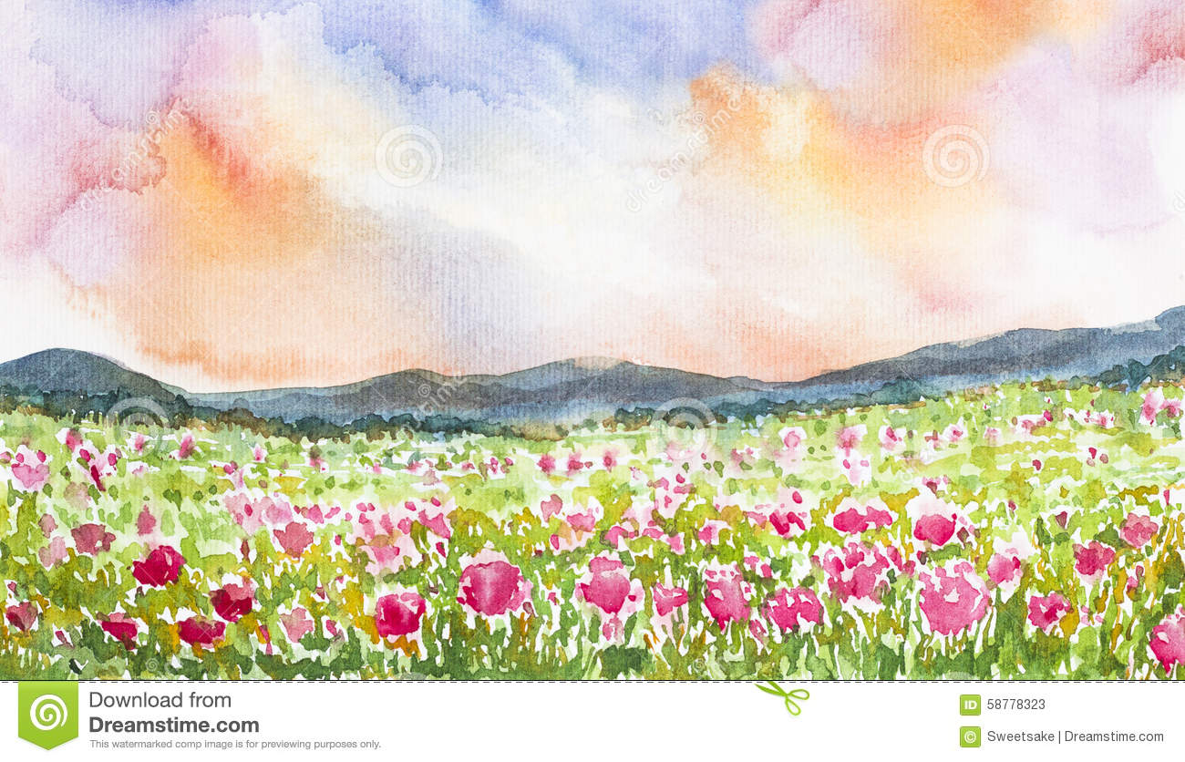Pink flower field landscape watercolor painted stock for Flower landscape