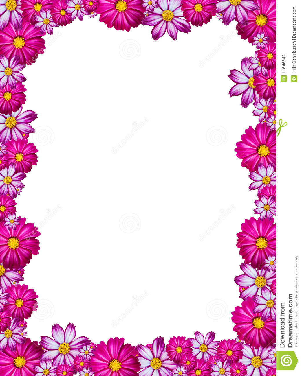 Pink, white and purple flower frame with white background.
