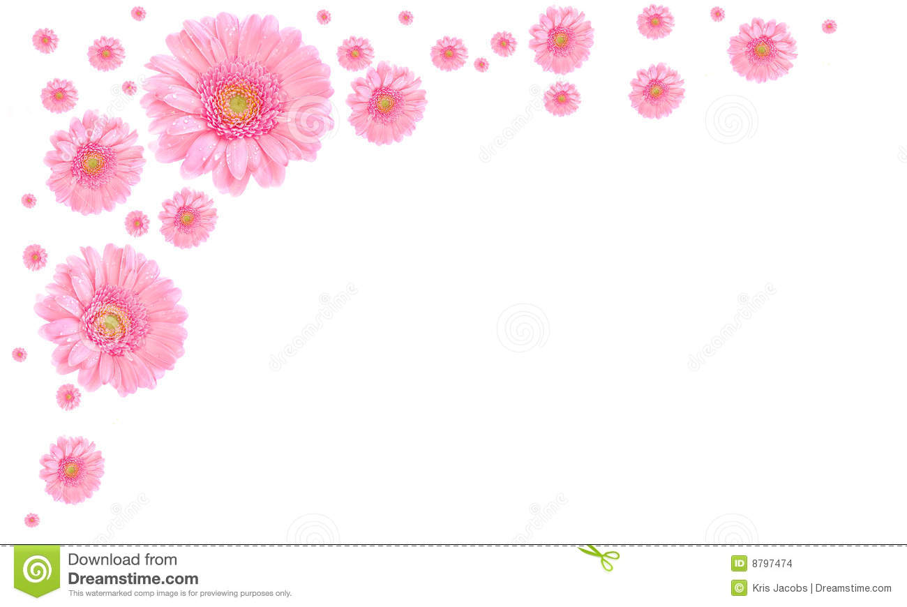 Pink flower frame on white background stock photo image of vibrant pink flower frame on white background mightylinksfo