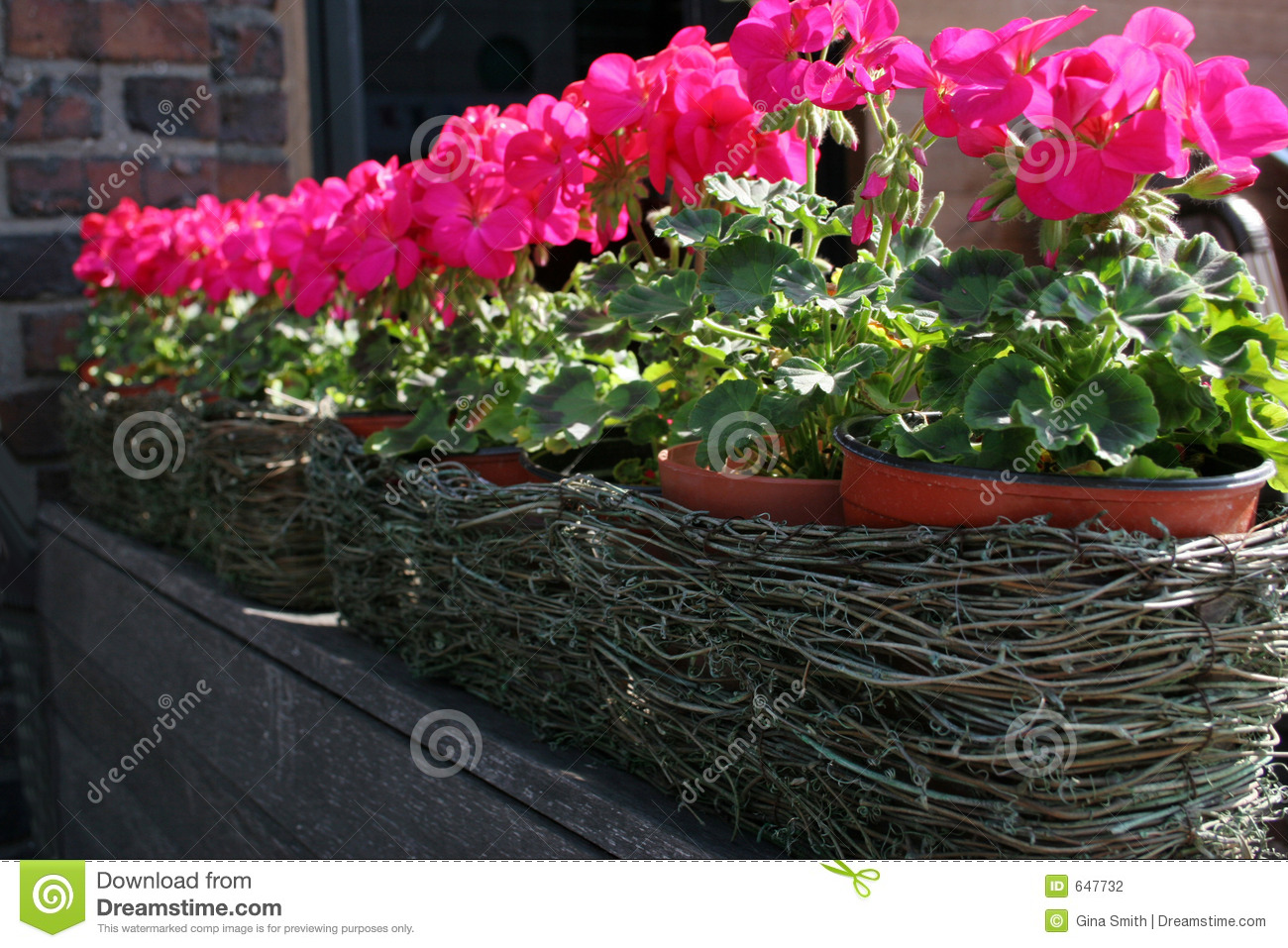 Great images of image of flower pots best home design ideas and pink flower pots stock graphy image mightylinksfo