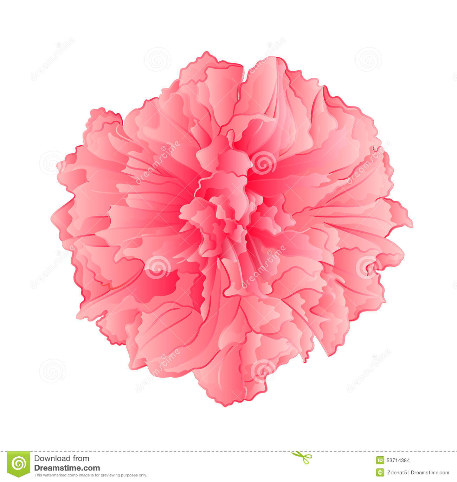 Pink flower sakura flower vector stock vector illustration of pink flower sakura flower vector stock vector illustration of flora isolated 53714384 mightylinksfo