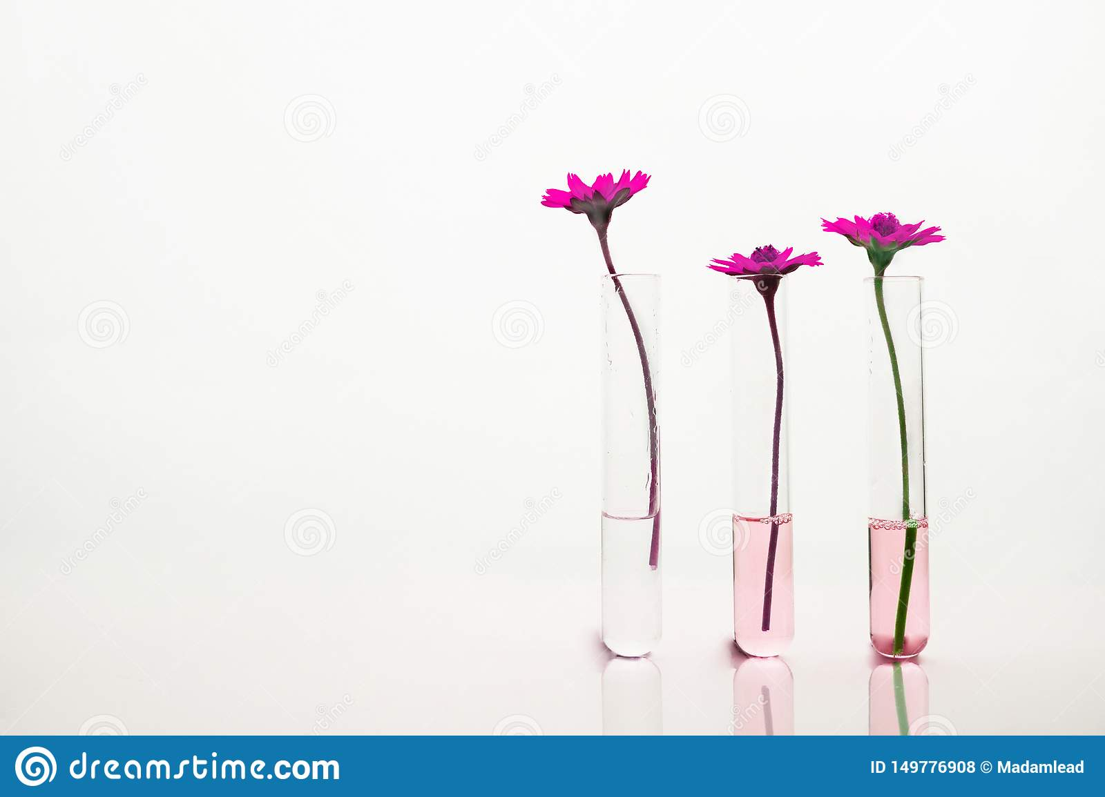 Clip Art Science Test Tubes And Beakers - Purple Science Flask , Free  Transparent Clipart - ClipartKey