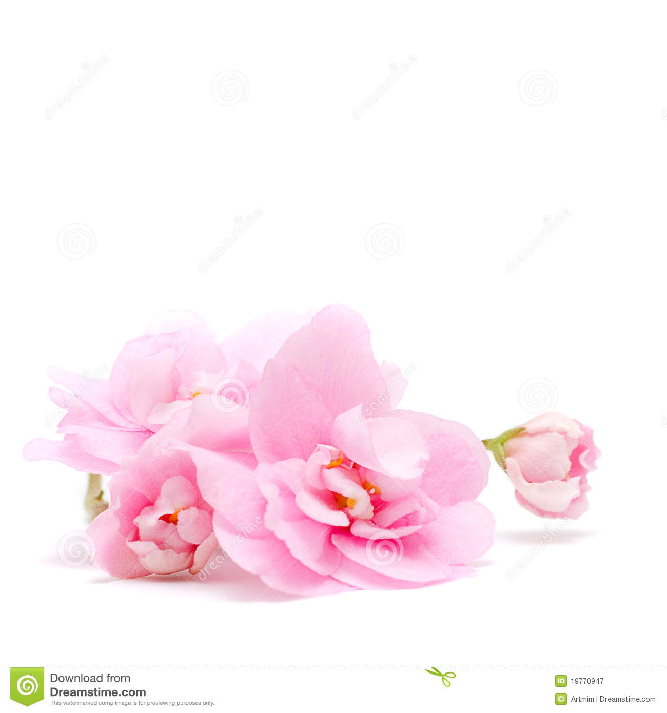 pink floral background jpg - photo #12