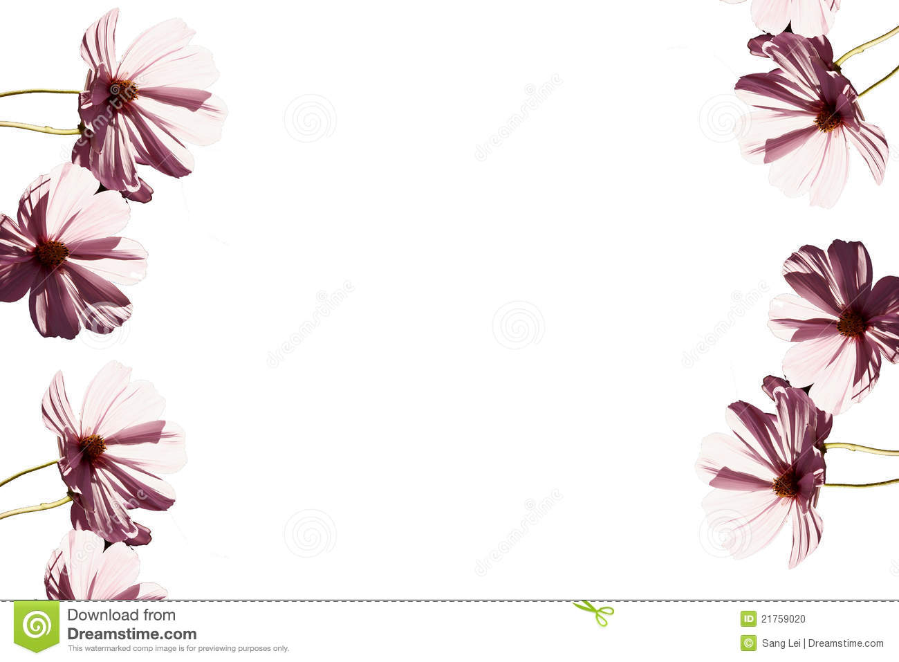 Pink Flowers Backgrounds Stock Photo Image Of Beauty 21759020