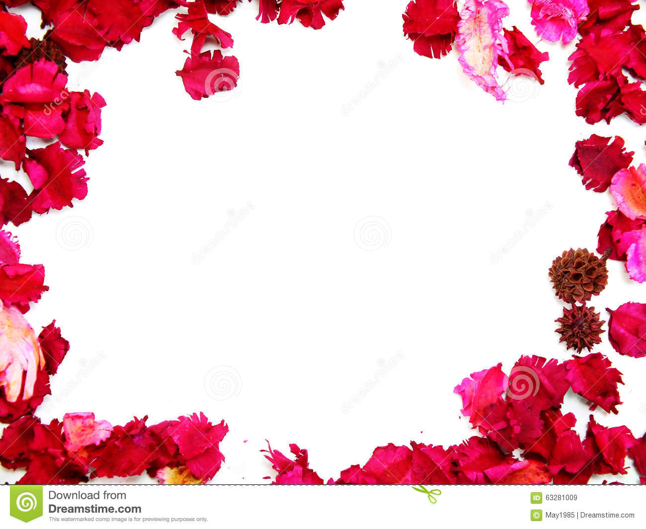 Pink flowers border frame stock image image of natural 63281009 pink flowers border frame mightylinksfo Choice Image