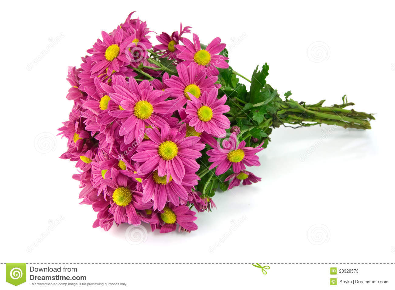 Pink Flowers Bouquet Stock Image Image Of Dating Petal 23328573