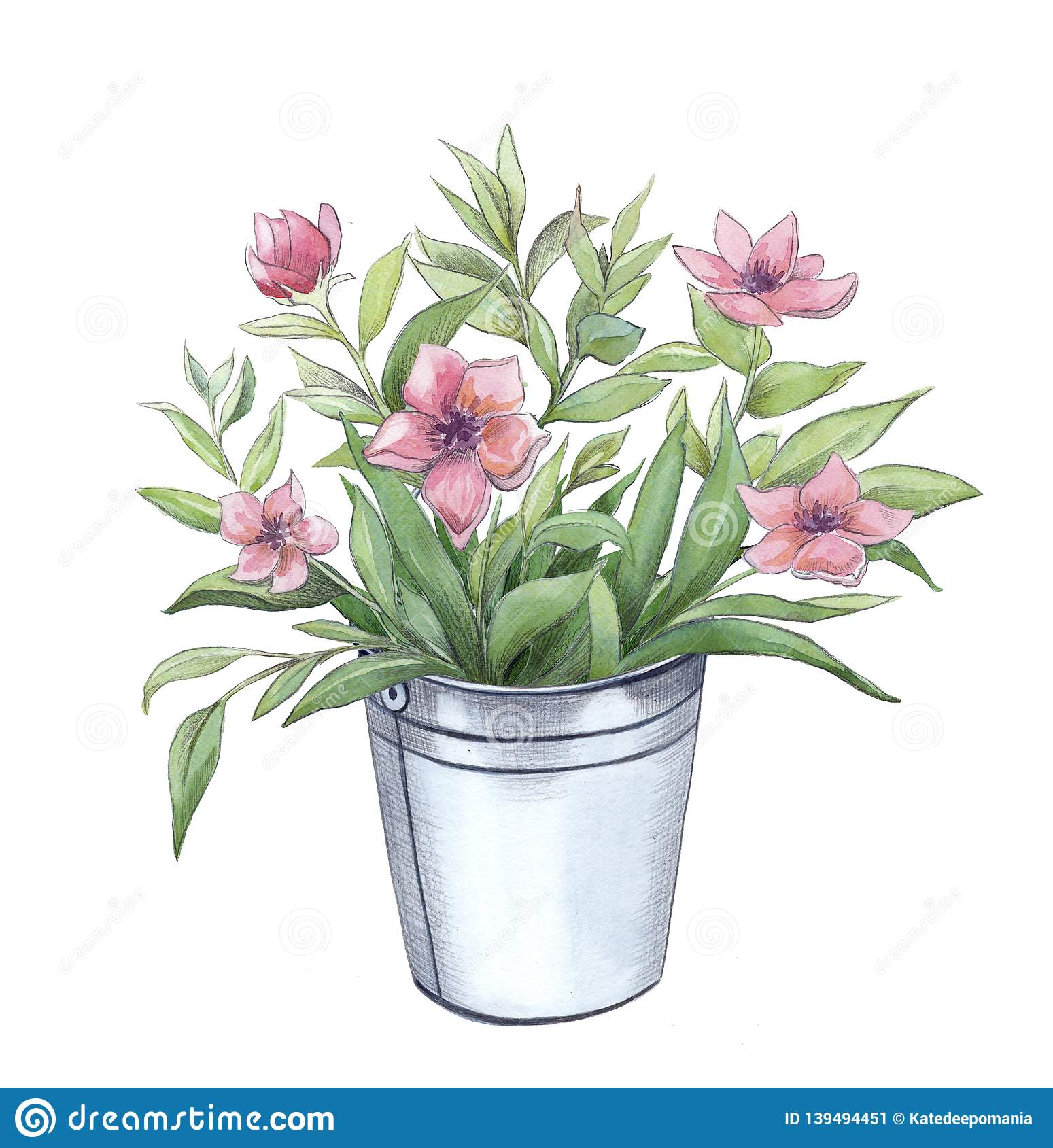 Pink Flowers Bouquet In Aluminum Bucket Stock Illustration Illustration Of Blossom Floral 139494451