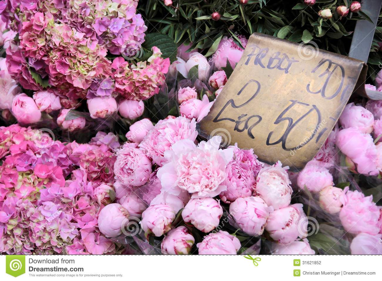 Pink Flowers In A Flower Shop Stock Photo Image Of Florist Shop