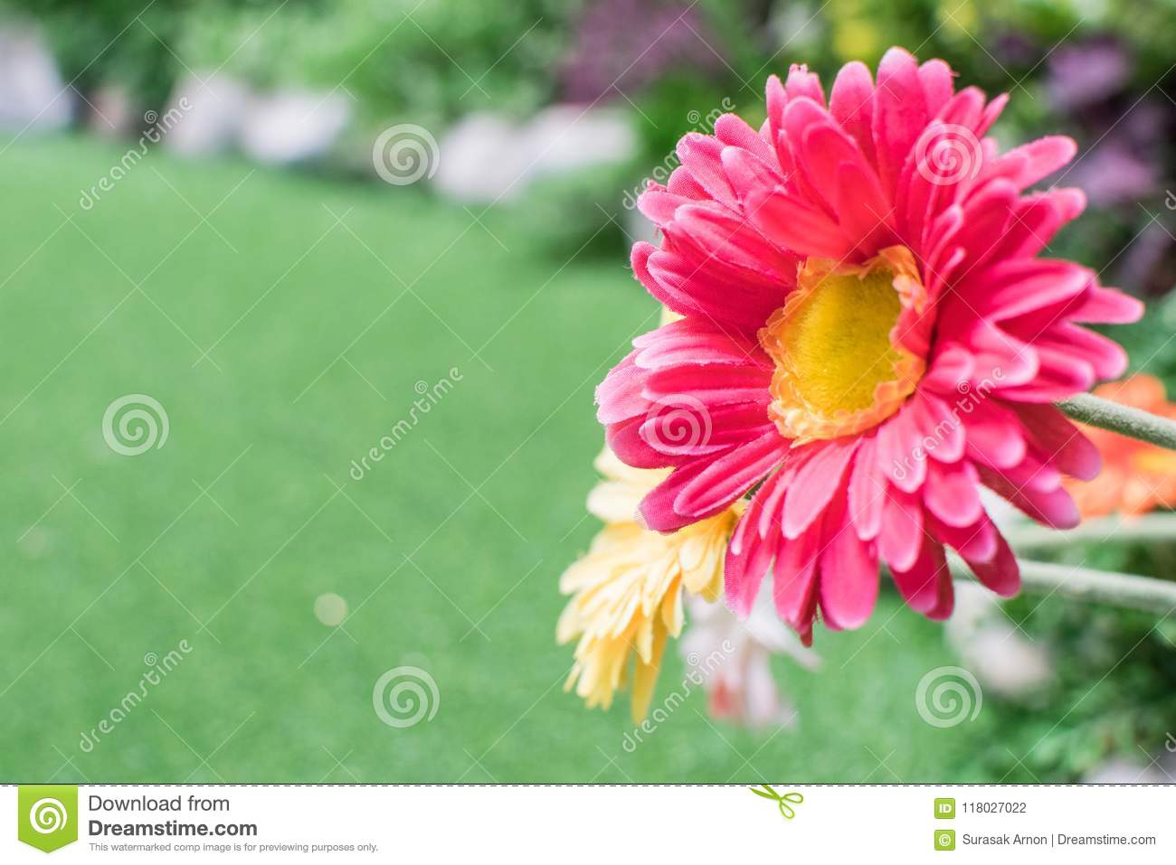 Pink Flowers Are Made Of Fabric With Artificial Green Grass Stock