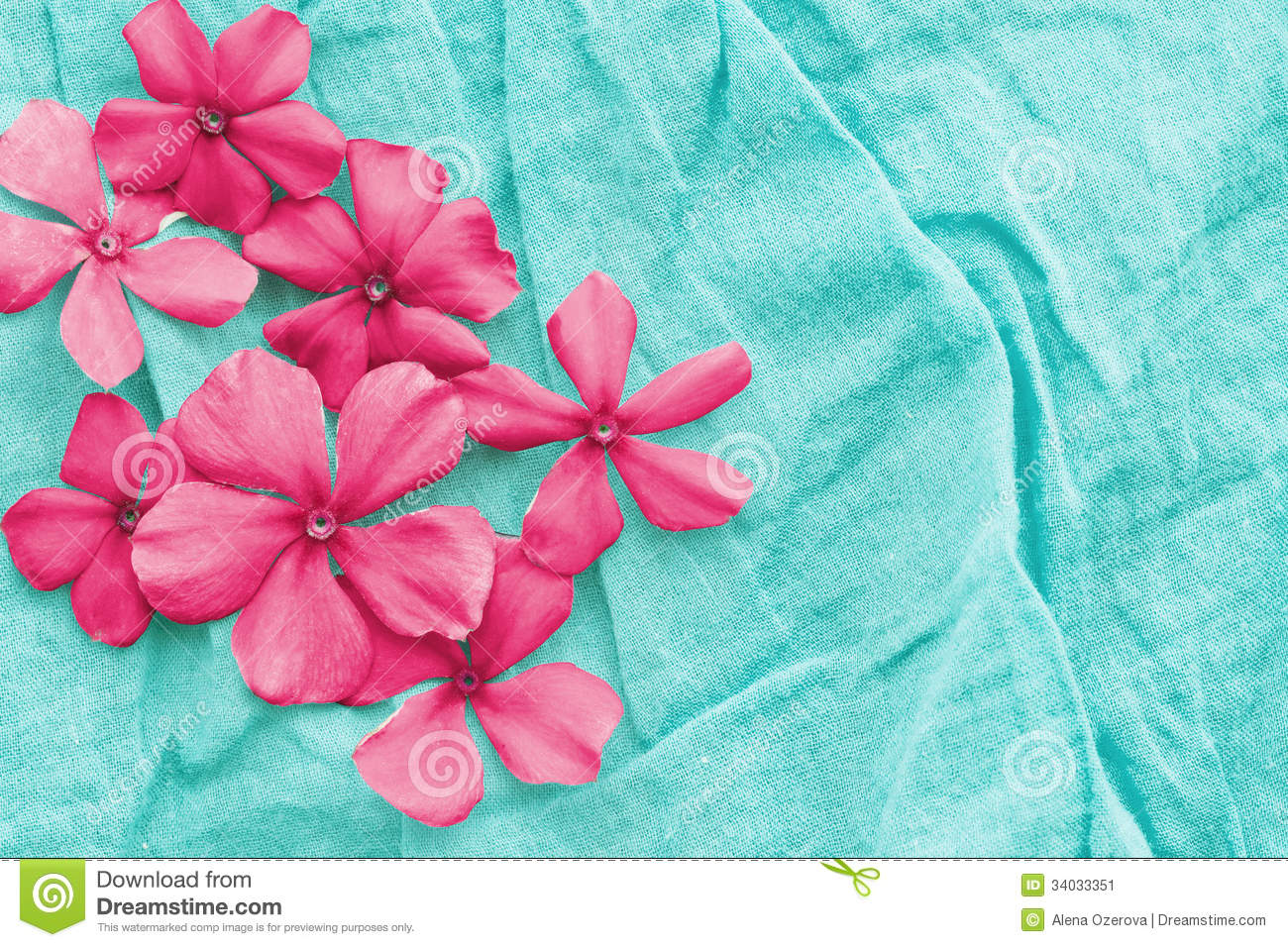 Pink Flowers Over Blue Stock Image Image Of Plant Macro 34033351