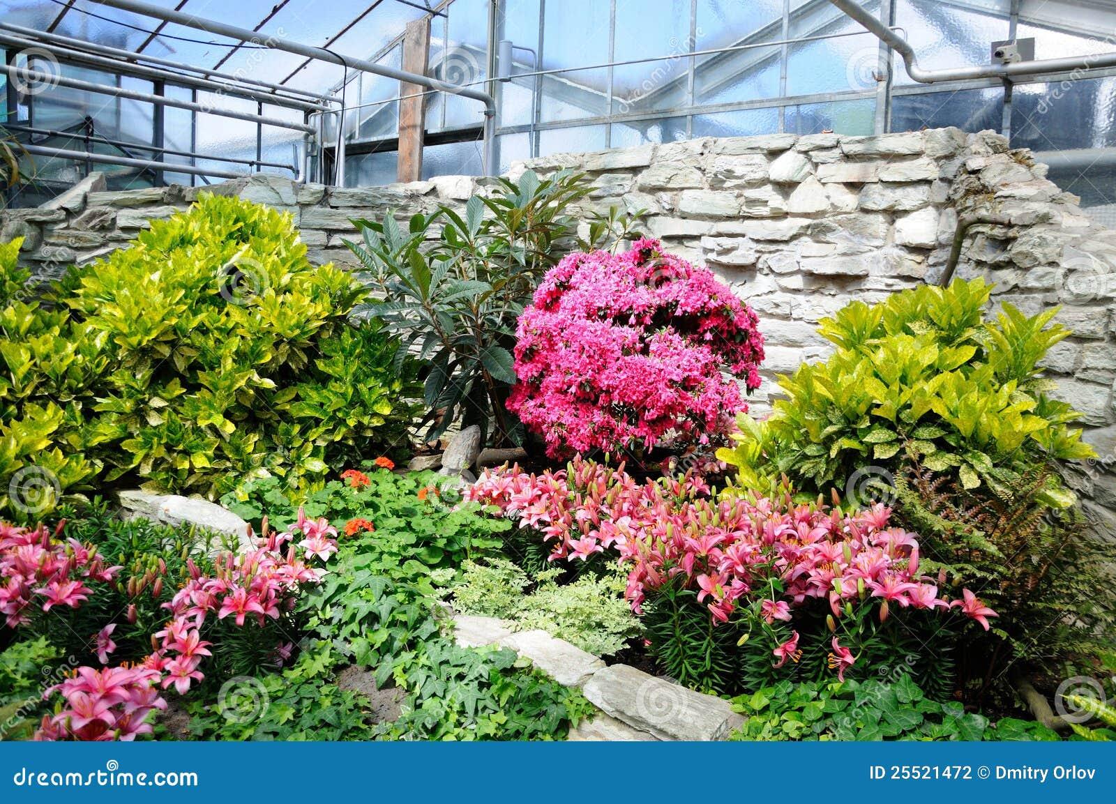 garten frankfurt, pink flowers in palmen garten, frankfurt am main, hessen, german, Design ideen