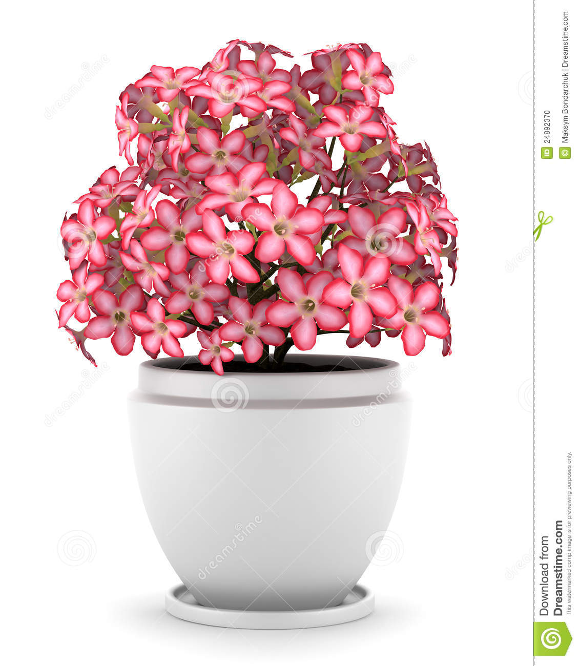 Pink flowers in pot isolated on white stock illustration pink flowers in pot isolated on white mightylinksfo