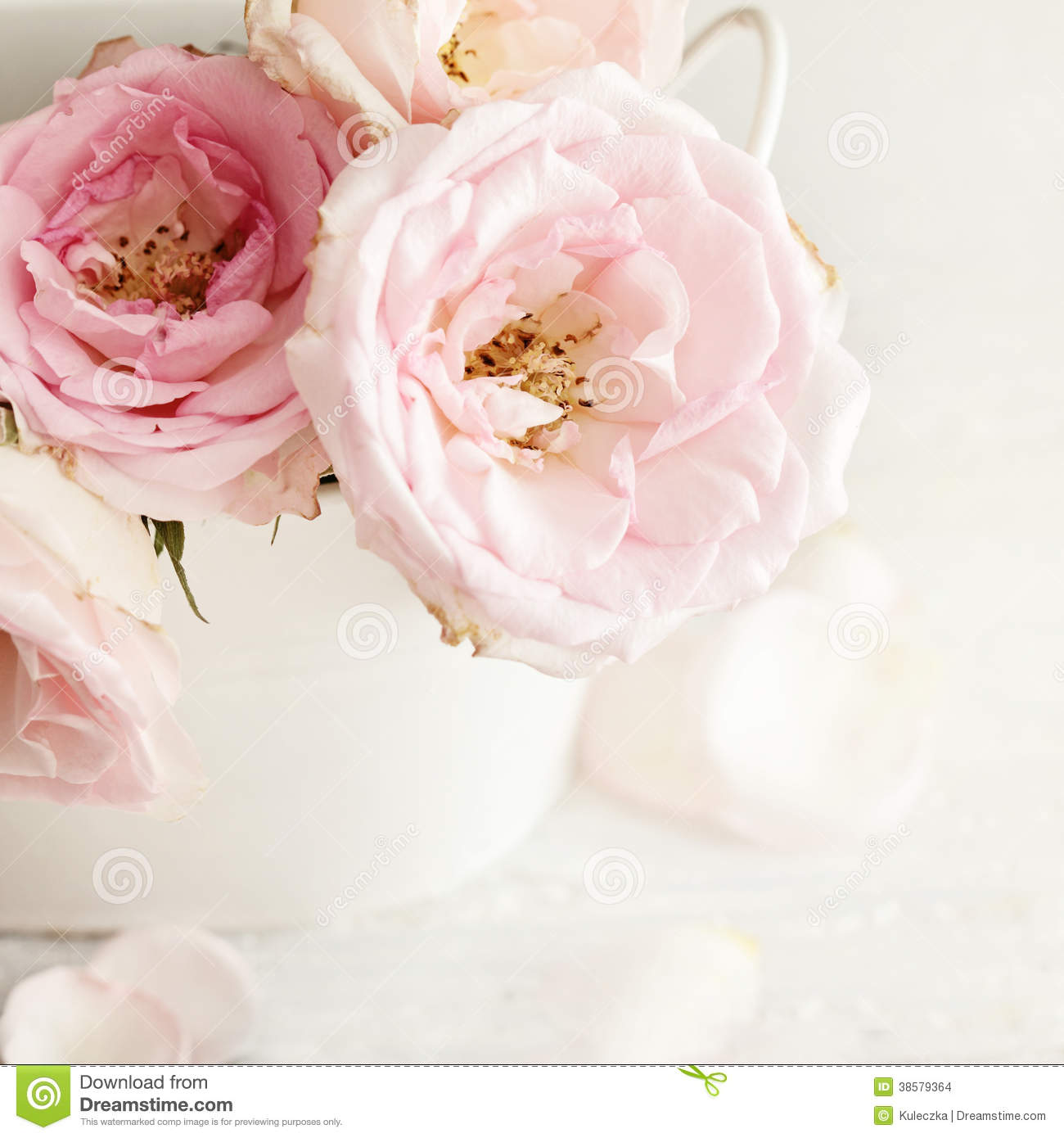 pink flowers stock images image 38579364