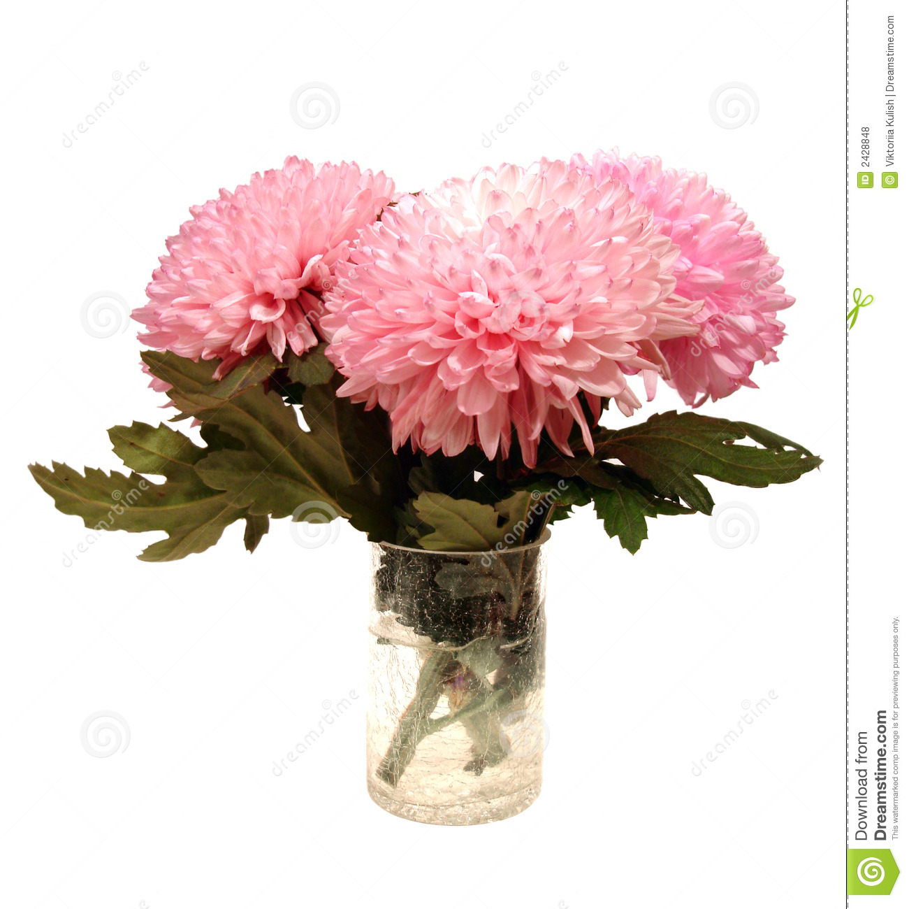 Pink Flowers In Vase Stock Photo Image Of Background 2428848