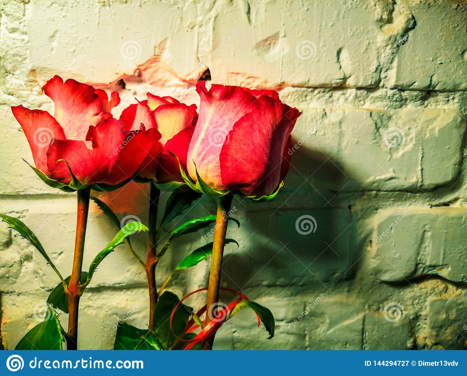 Pink flowers on a white brick wall background