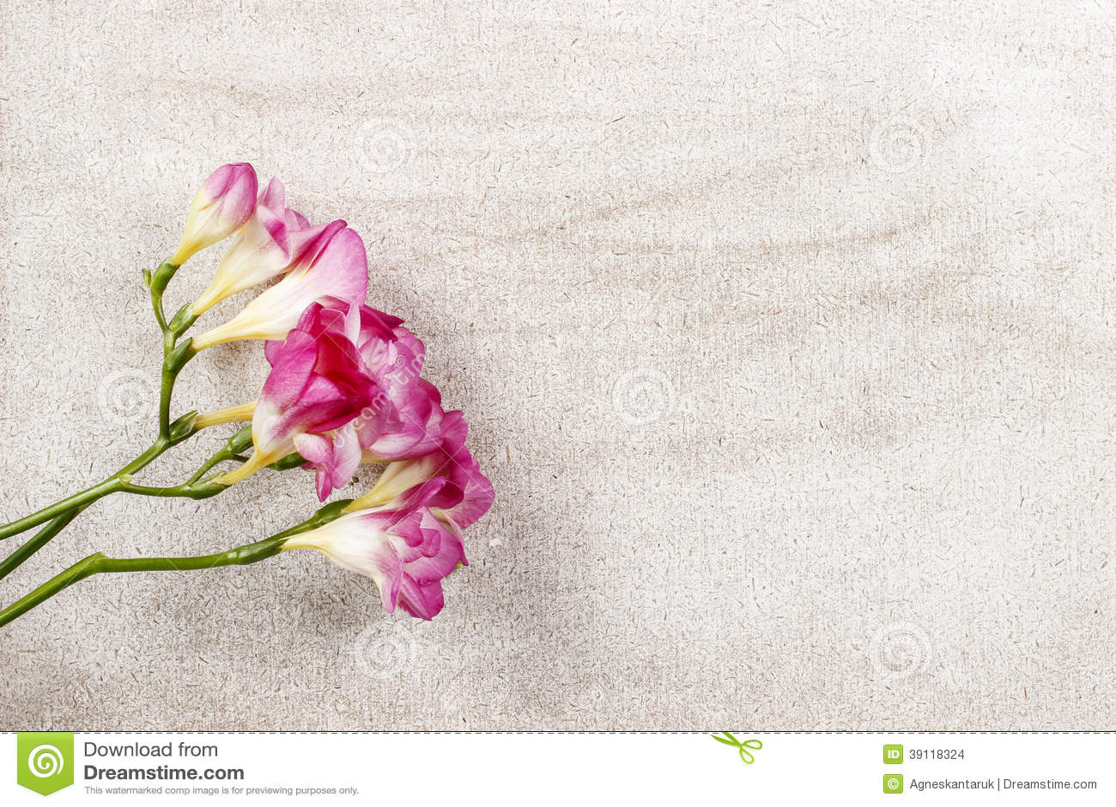 Pink freesia flowers on wooden background stock photo 39118324 pink freesia flowers on wooden background stock photo 39118324 megapixl mightylinksfo