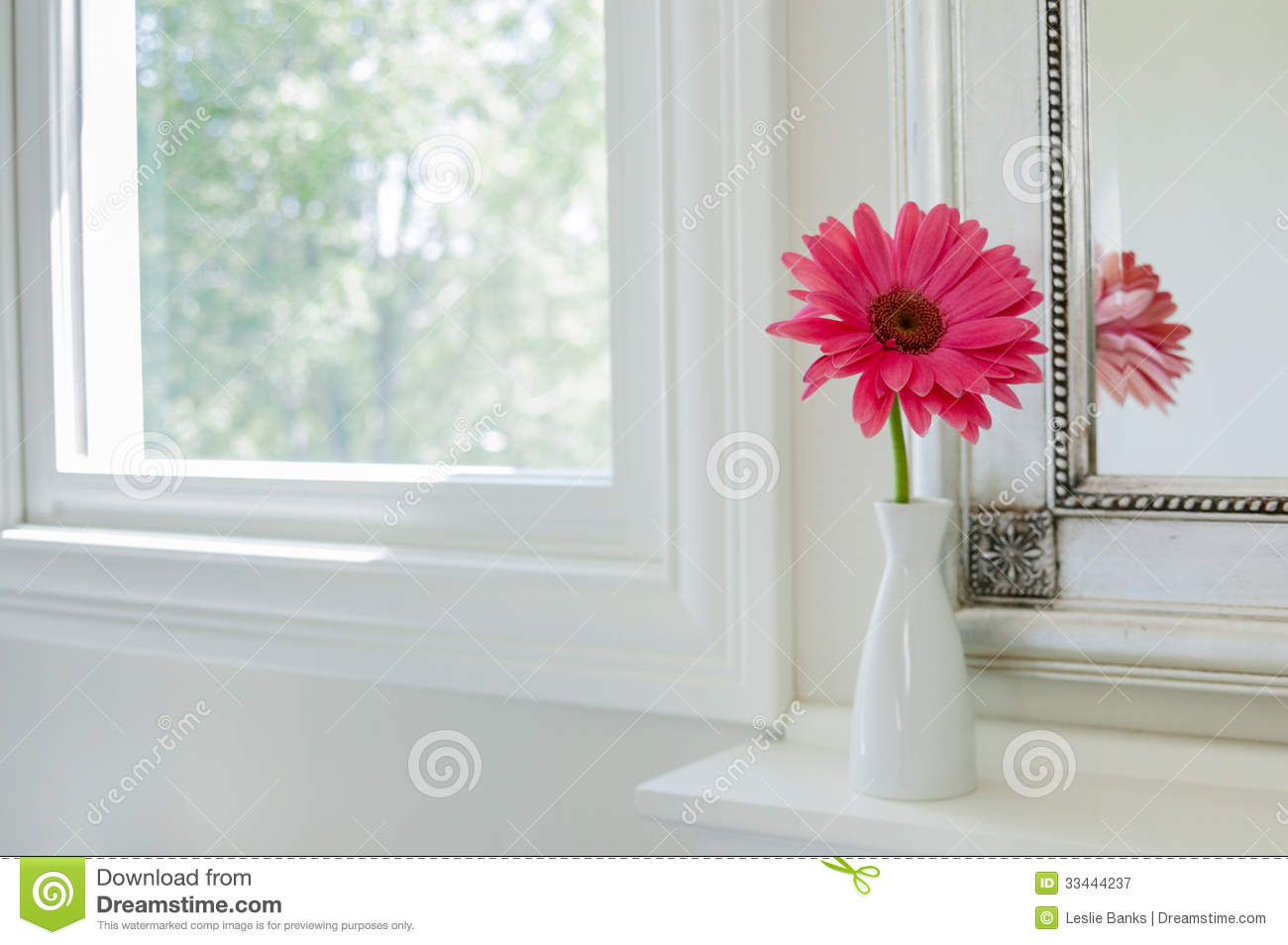 Displaying 18 gt images for pink daisies facebook cover