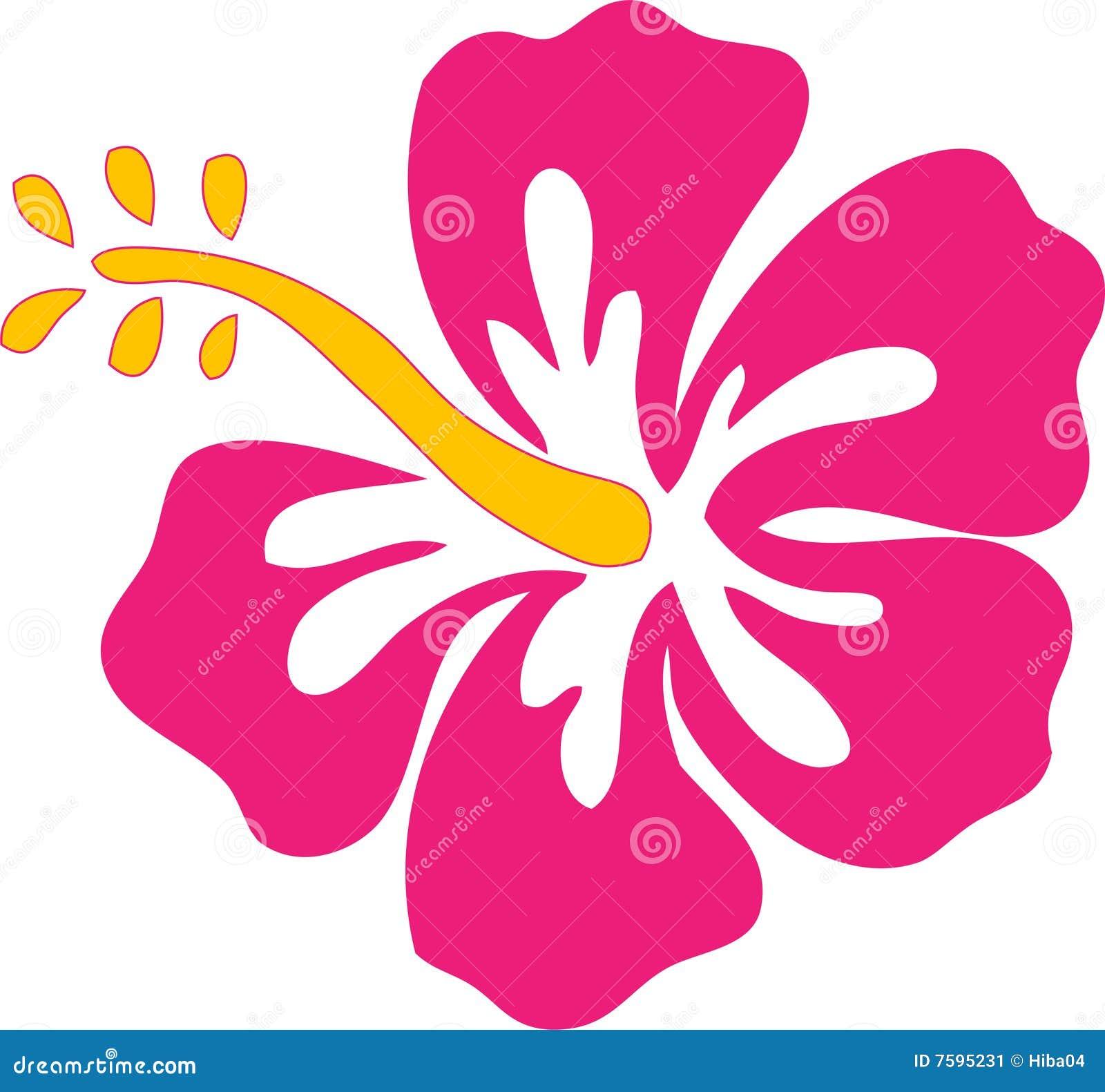 Pink Hibiscus Flower Cartoon Vector Cartoondealercom 7595231