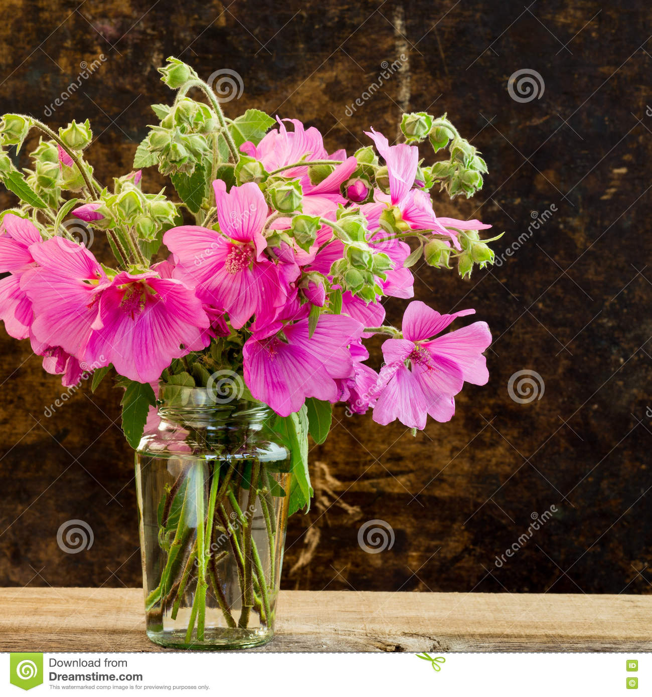 Pink Hibiscus Flowers Bouquet Dark Background Stock Image Image Of