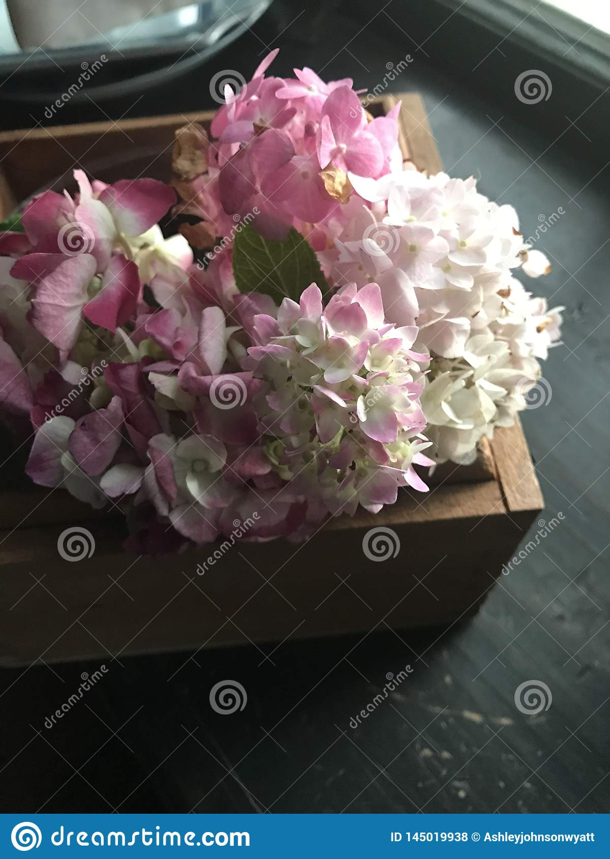 Pink hydrangeas in wooden box