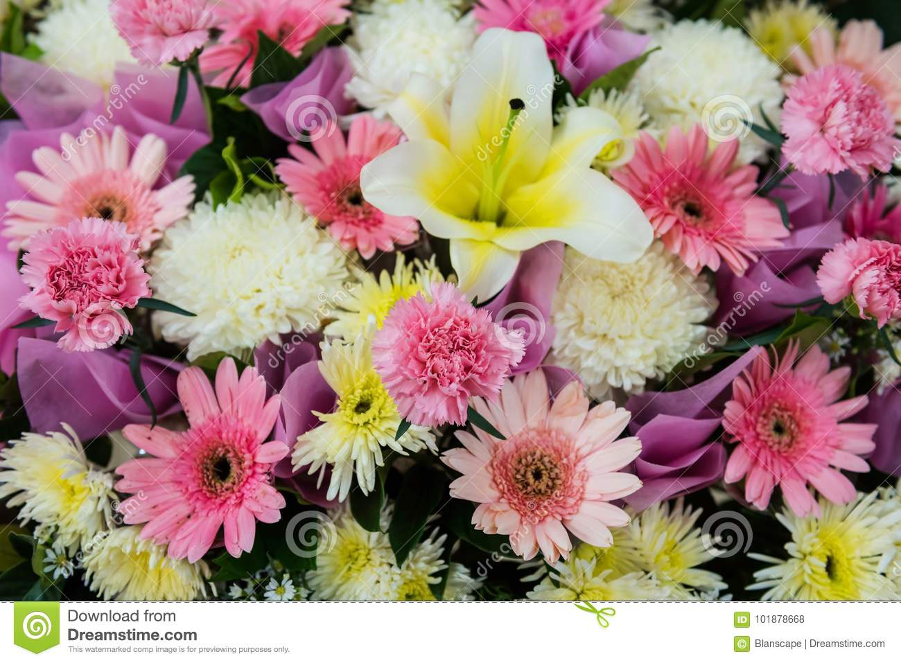 Pink Lily Flowers For Wedding Decoration Stock Photo Image Of