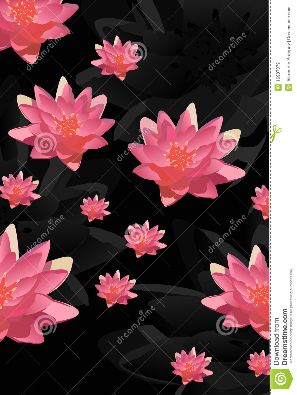 Pink lotus flowers background royalty free stock images image background black flowers illustration lotus dhlflorist Image collections