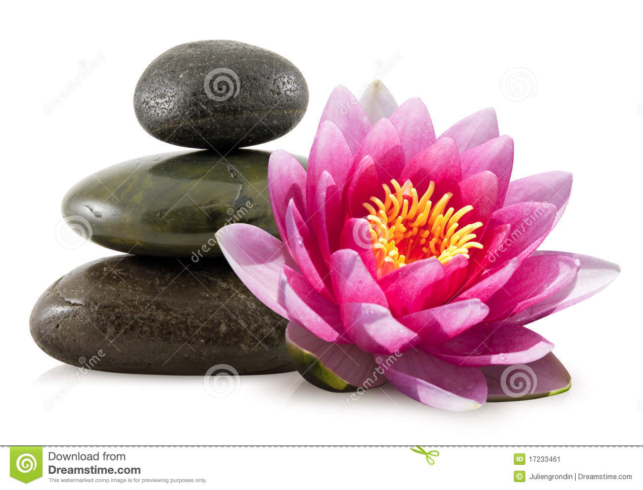Pink Lotus and Spa Stones