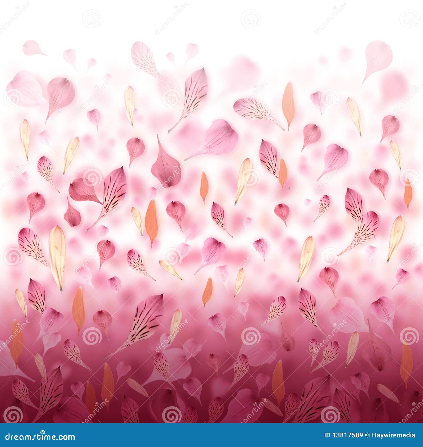 Pink Love Flower Valentine Background